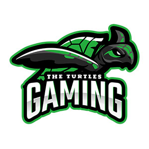 THE TURTLES GAMING