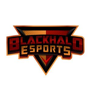 BLACKHALO ESPORTS